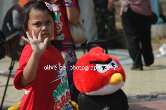 dadaaaa angry bird hehe