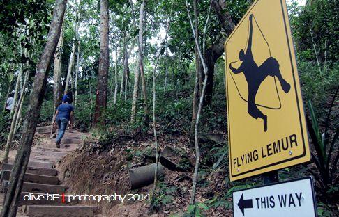 escape penang