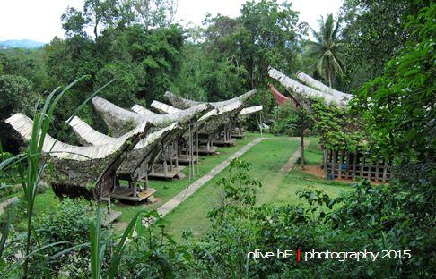 buntu pune, wisata sejarah toraja, destinasi wisata toraja, pong maramba