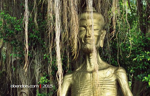uruvela, destinasi wisata lasem, vihara ratanava arama, buddha gautama