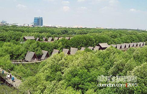 hutan wisata mangrove, pantai indah kapuk, taman wisata alam angke