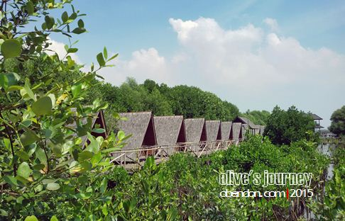 taman wisata alam angke kapuk, twa angke kapuk, hutan mangrove jakarta