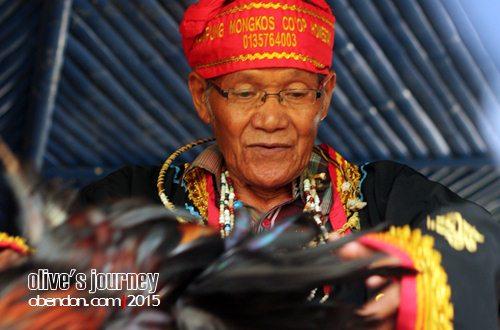 suku bidayuh mongkos, perbatasan indonesia malaysia. dayak bidayuh, upacara tolak bala