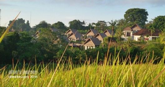the sanctoo villa, private villa in ubud, honemoon in ubud, the sanctoo