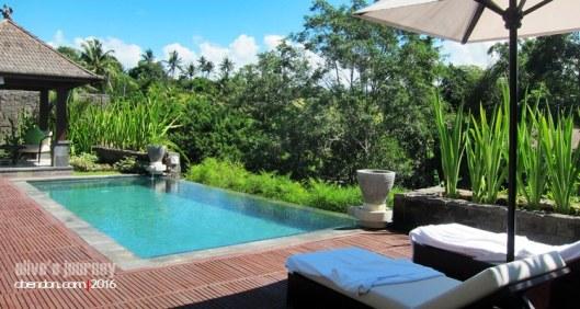 the sanctoo bali, the sanctoo villa, villa di singapadu, villa buat bulan madu di ubud