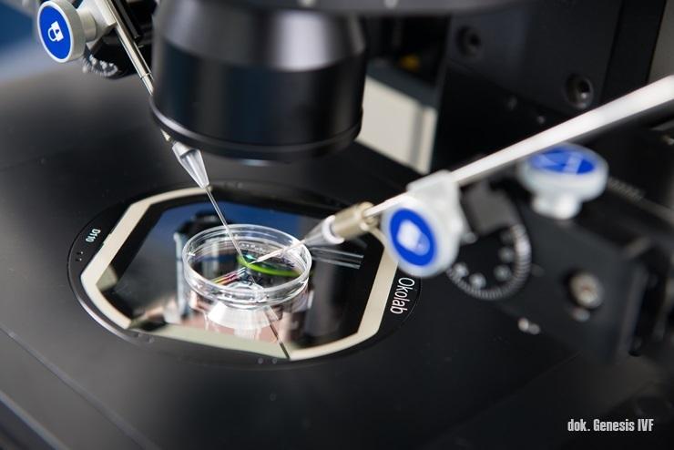 in vitro fertilitation, program bayi tabung penang, genesis ivf, medical tourism penang