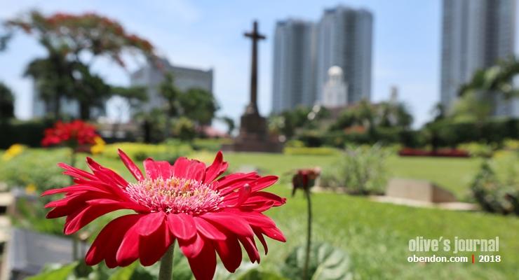 Jakarta War Cemetery, Commonwealth War Graves, Remembrance Day, Lois Blog Contest, Lois Indonesia