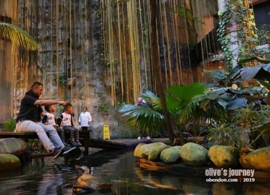 rainforest 1 utama, 1 utama shopping centre, rainforest