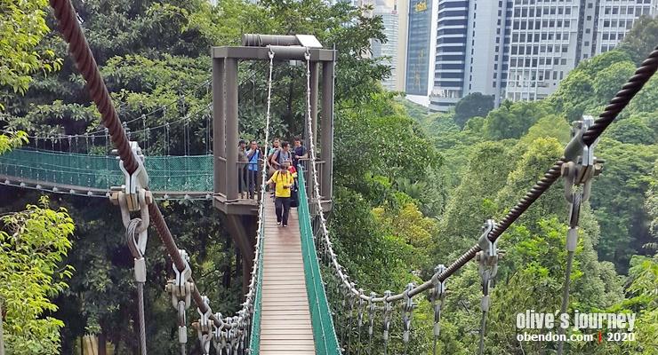 canopy walk kl eco park, jembatan istagenik kuala lumpur, instagramable spot in kuala lumpur